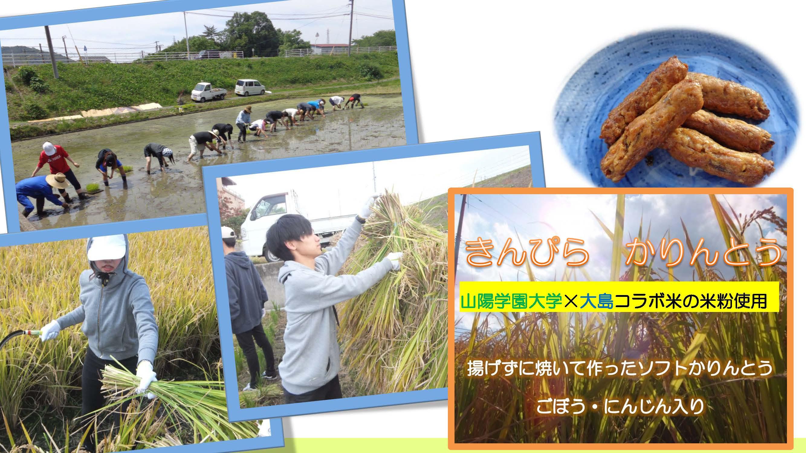 20181203秋穫祭_ページ_2